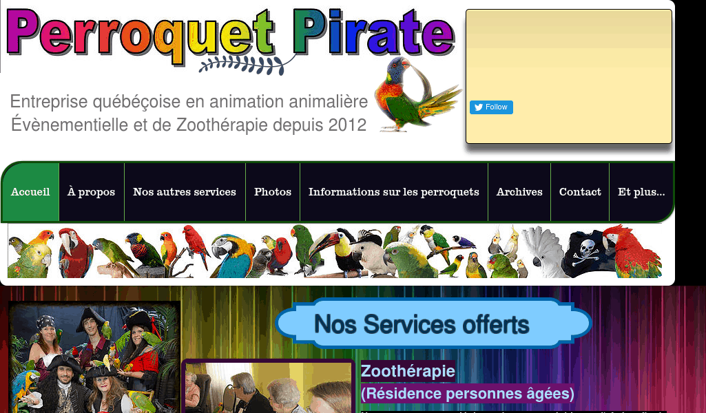 Perroquet Pirate